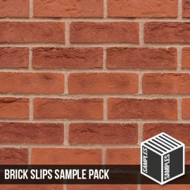 Hastings Red Blend Brick Slip - Sample