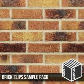 Lambeth Mixture Brick Slip - Sample