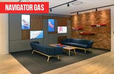 Navigator Gas Case Study